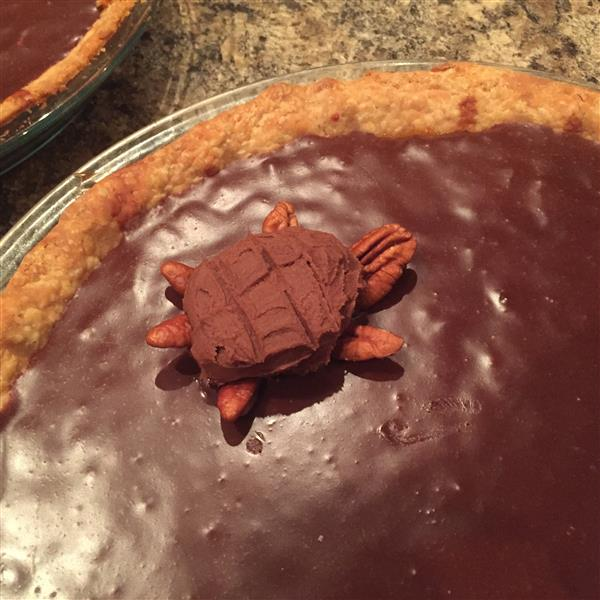 Mud Turtle Pie